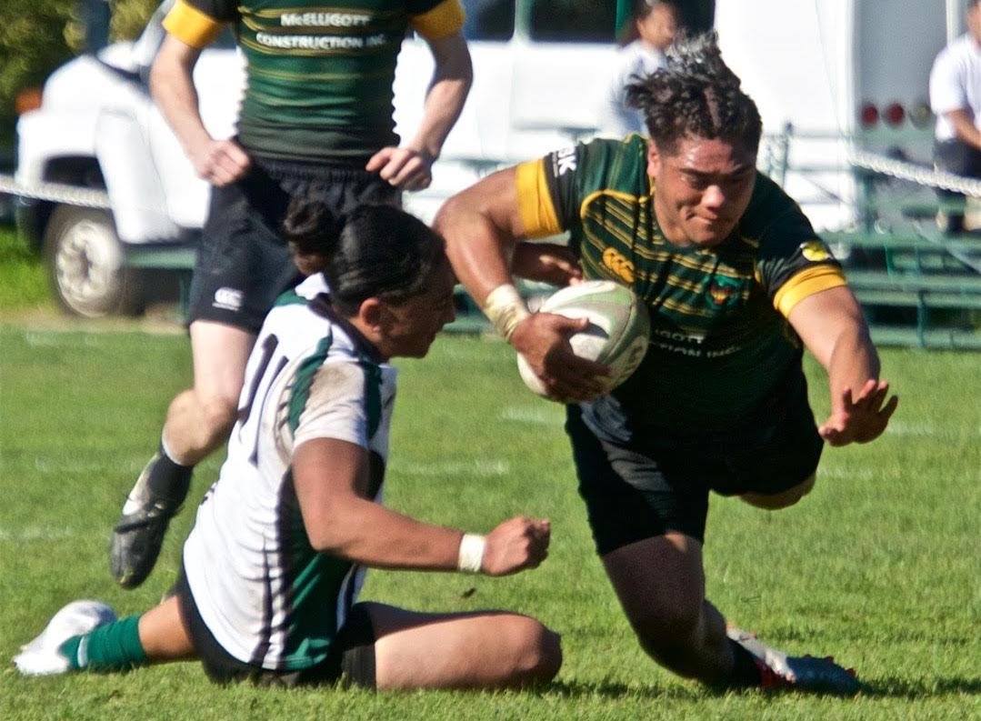 SFGG v Peninsula Green rugby March 11 2017. Austin Brewin photo.