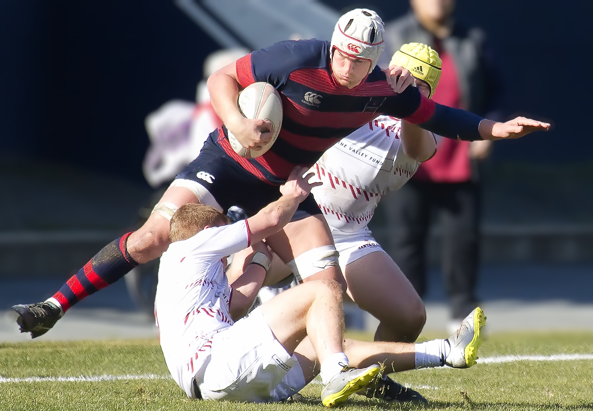 Saint Mary's rugby v Santa Clara Jan 28 2017. Michael Geib photo.