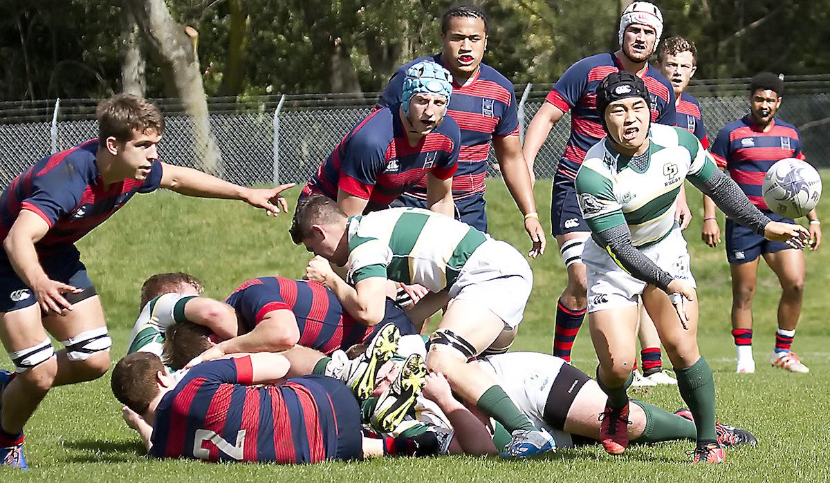Saint Mary's rugby v Cal Poly Feb 25 2017. Michael Geib photos