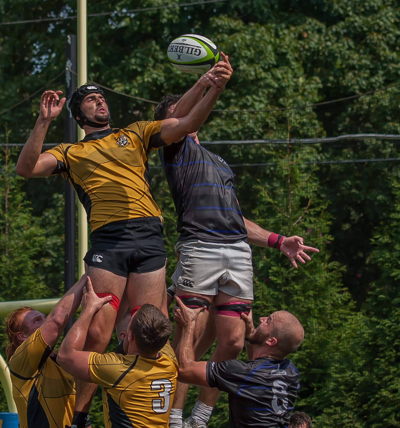 Towson University v James Madison rugby fall 2016. Colleen McCloskey photo for Goff Rugby Report.