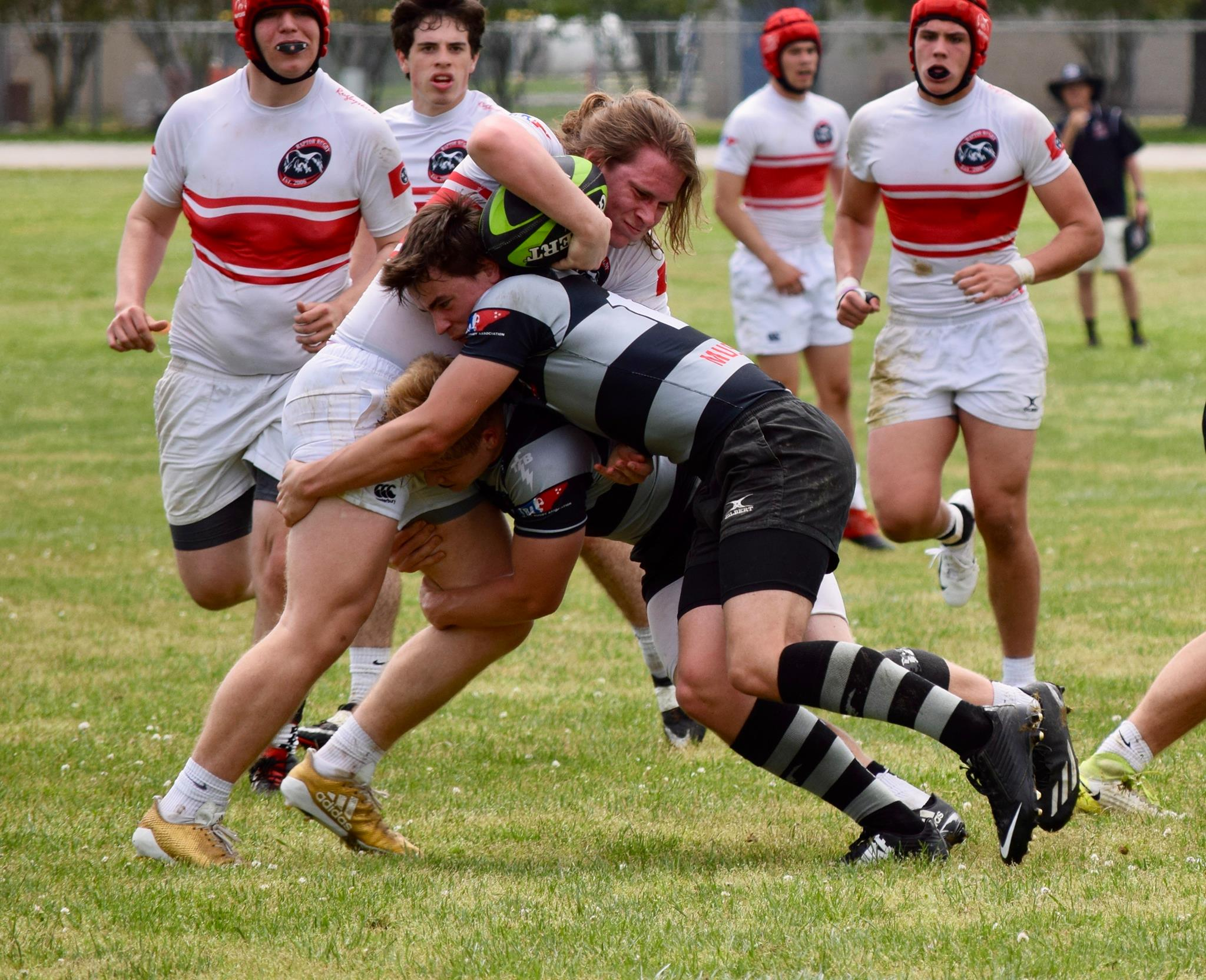 Tennessee Looks To Finals Weekend Goff Rugby Report