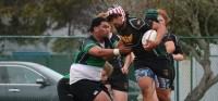 Wynyard for SFGG. Photo SFGG Rugby.