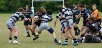 Harlequin Rugby vs Germantown. Lucinda White photo.